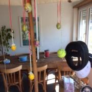 Frohe Ostern wünscht Anita